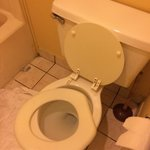 Foto de Americas Best Value Inn & Suites - Warren / Detroit
