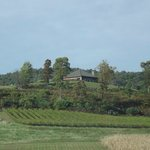 Hauser Estate Winery, up on the hilltop.