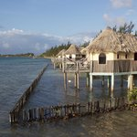 Photo de Thatch Caye Resort