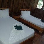 Foto de Turtle Beach Lodge