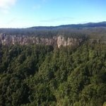 Springbrook National Park Foto