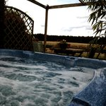 View from the outdoor hot tub