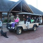 Departing for a game drive