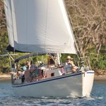 Joy Ride Sailing Tours