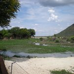 Photo de Tau Game Lodge