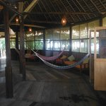Φωτογραφία: Heliconia Amazon River Lodge