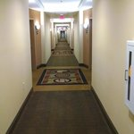Foto van Comfort Suites Spartanburg