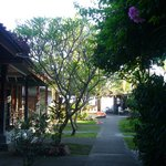 The way from the rooms to the warung + beach
