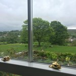 The view from a very comfortable en-suite bedroom over the garden, fields of sheep and the hills