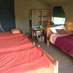 Foto van Serengeti Wilderness Camp