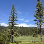 Foto de Americas Best Value Inn-Tahoe City/Lake Tahoe