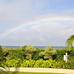 Maui Sunseeker LGBT Resort resmi