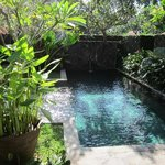 صورة فوتوغرافية لـ ‪Kayumanis Ubud Private Villa & Spa‬