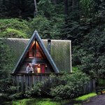 Big Sur Campground & Cabins Foto