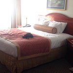 BEST WESTERN PLUS Burlington Inn & Suitesの写真