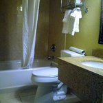 Foto de BEST WESTERN PLUS Franklin Square Inn Troy/Albany