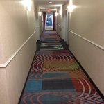 صورة فوتوغرافية لـ ‪Holiday Inn Express Stroudsburg - Poconos‬
