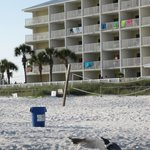 Foto de Sugar Sands Inn and Suites