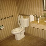 Φωτογραφία: Holiday Inn Express Albany