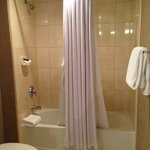 1 BR Suite - Separate Shower/Toilet in Bathroom