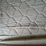 mold on mattress rwd roof inn pigeon forge