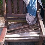Rotten chair gives way!
