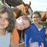 Kids loved the horses