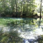 Foto Ginnie Springs