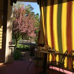 Breakfast on the porch with curtains to mitigate the sun