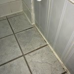 Dirty bathroom floor grout
