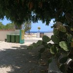 Foto de Bonaire Happy Holiday Homes