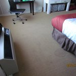 Bilde fra Holiday Inn Hotel & Suites Boston-Peabody