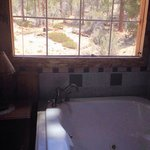 View from jacuzzi tub at hunters lodge