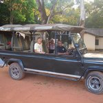 Safari Joe - Day Tours