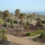 Photo of Cabo de Gata Garden