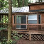 The Redwoods RV Resort의 사진