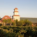 Welcome to South Coast Winery Resort & Spa