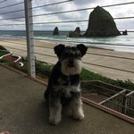 Foto de Hallmark Resort Cannon Beach