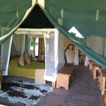 the tents are so great an the bed very comfortable my friend and i were joking : you can for get