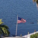 Foto de BEST WESTERN Fort Myers Waterfront