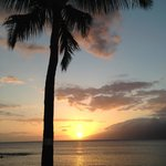 The Mauian Hotel on Napili Beach resmi
