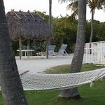 cove seating, hammocks and pool area to the right