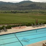 Bilde fra Burrowing Owl Estate Winery Guest House
