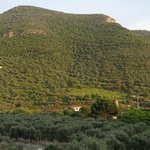 Φωτογραφία: Natureland Efes Pension