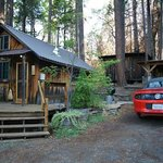 Foto di Sunset Inn Yosemite Vacation Cabins