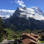 Simply amazing panoramic view of eiger from the room