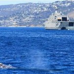 Gray Whale & Littoral Combat Ship (LCS)