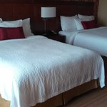 Φωτογραφία: Courtyard by Marriott Mankato