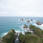 Nugget Point Foto