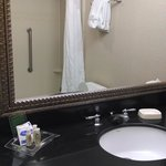Φωτογραφία: Holiday Inn Hotel & Suites Aggieland